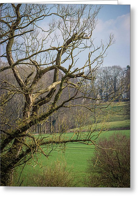 Countryside In Belgium - Greeting Card