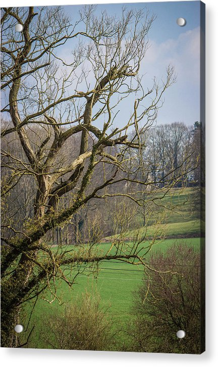 Countryside In Belgium - Acrylic Print
