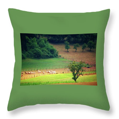 Countryside Landscape - Throw Pillow