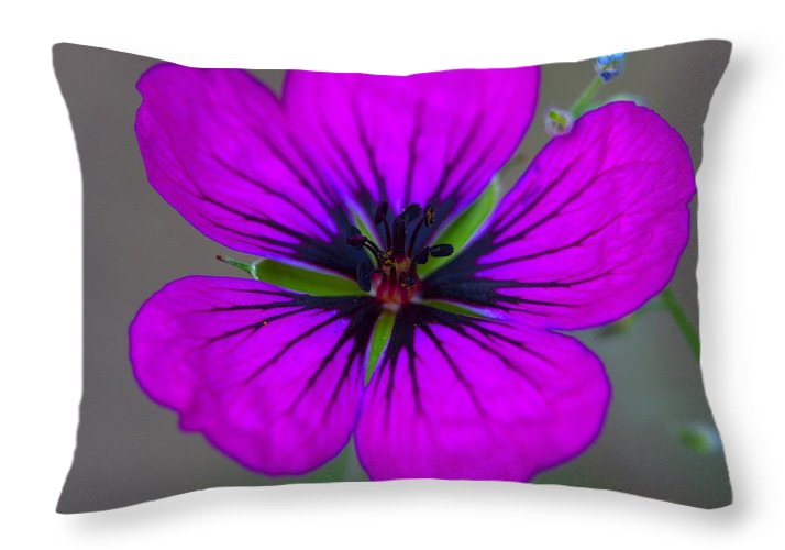 Delicate Beauty - Throw Pillow
