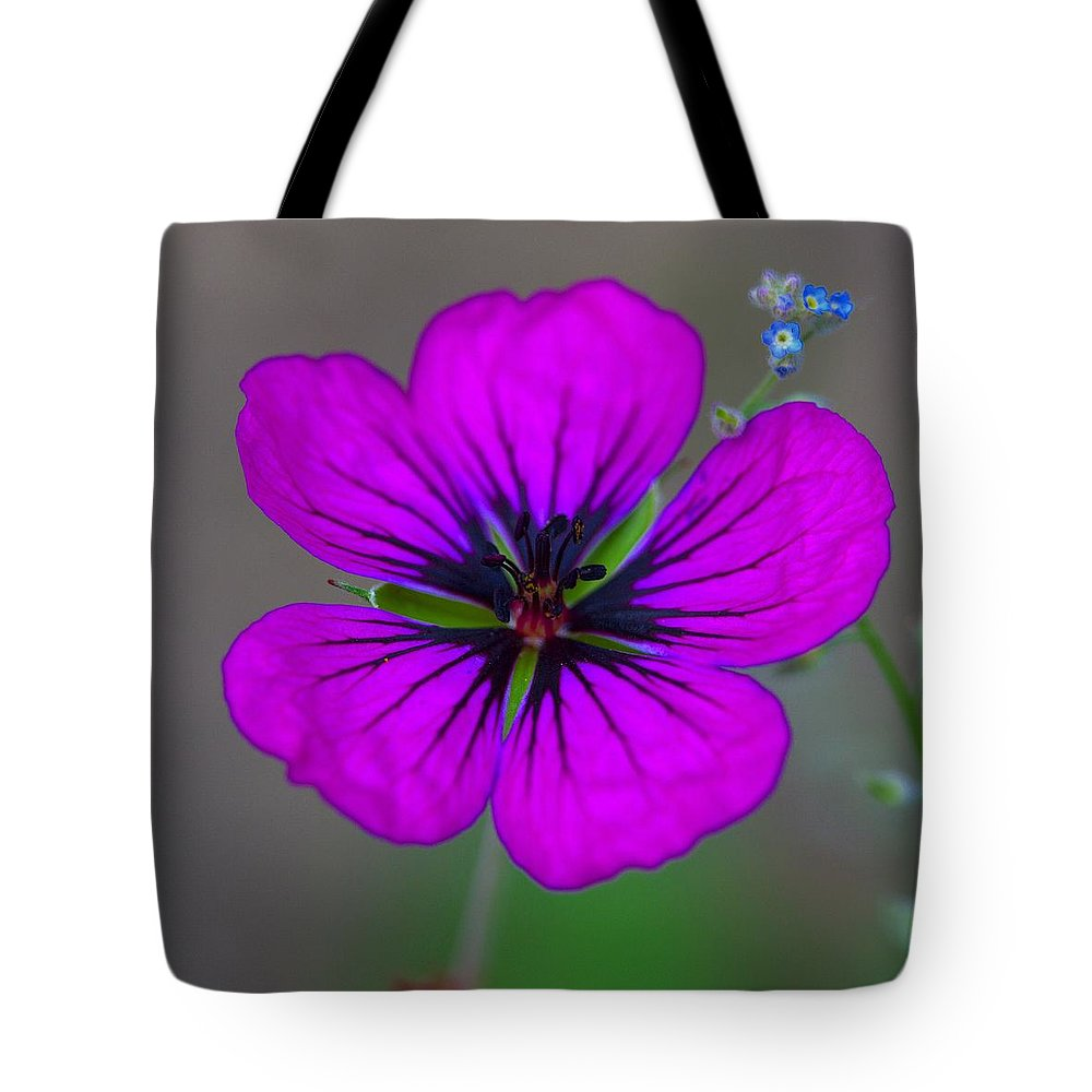 Delicate Beauty - Tote Bag