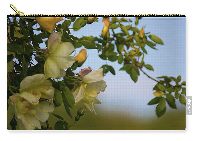 Delicate Roses - Carry-All Pouch