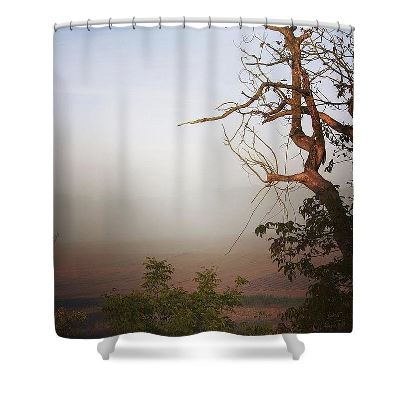 Foggy Morning - Shower Curtain