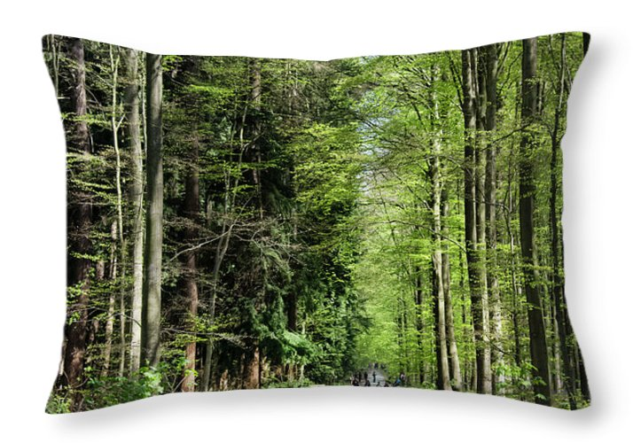 Forest Path - Throw Pillow