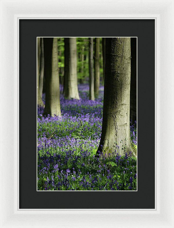 Light And Shadows - Framed Print