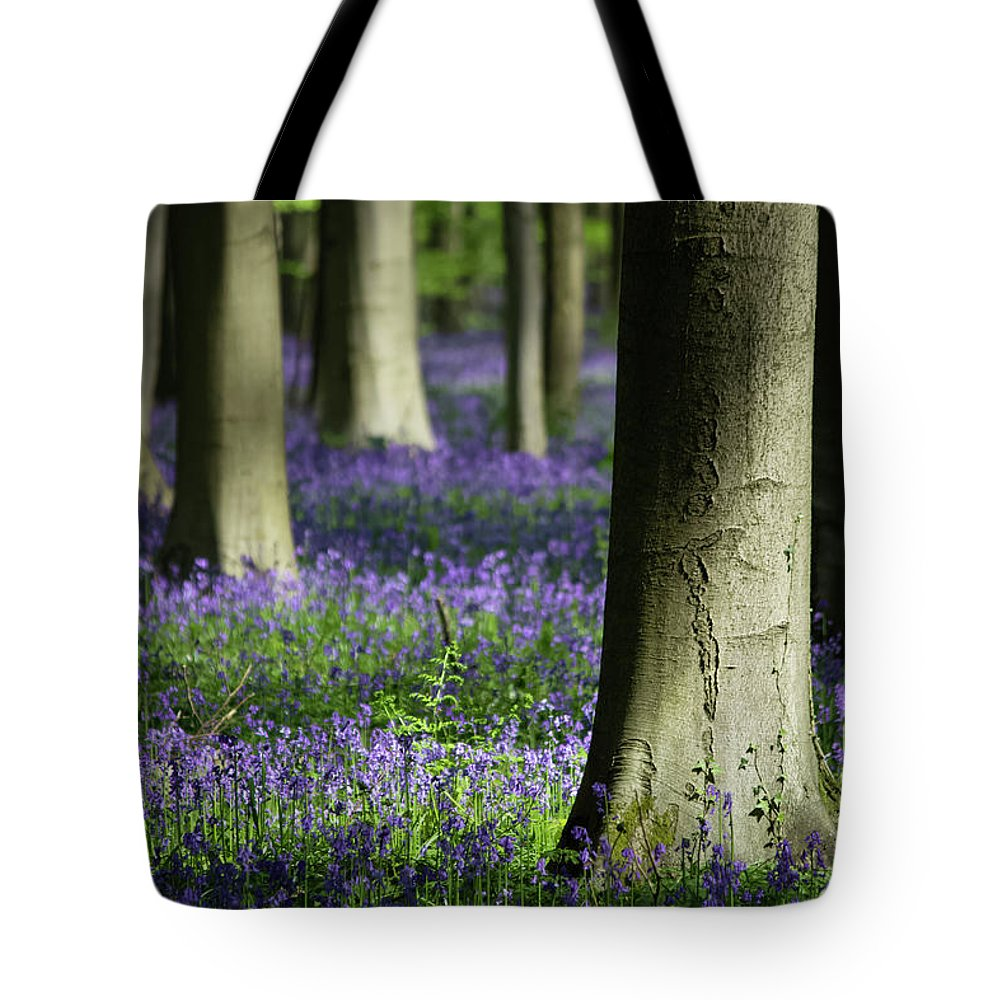 Light And Shadows - Tote Bag