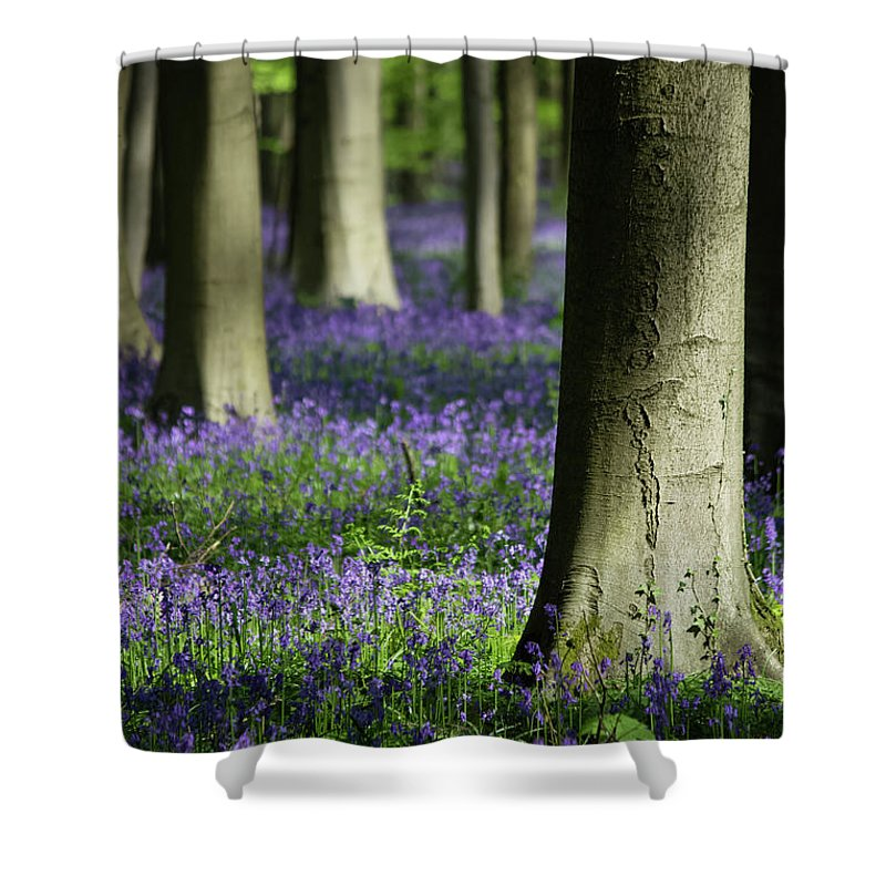 Light And Shadows - Shower Curtain