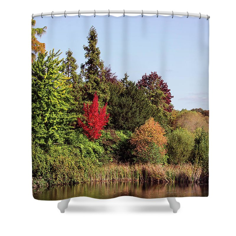 Like In The Wonderland - Shower Curtain