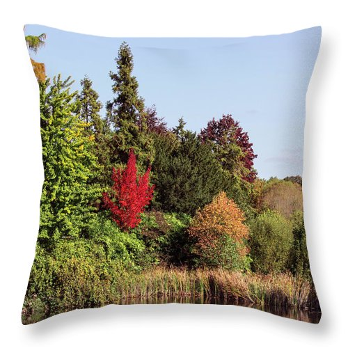Like In The Wonderland - Throw Pillow