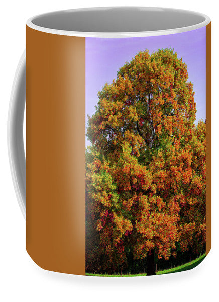 Nature In The Autumn  - Mug