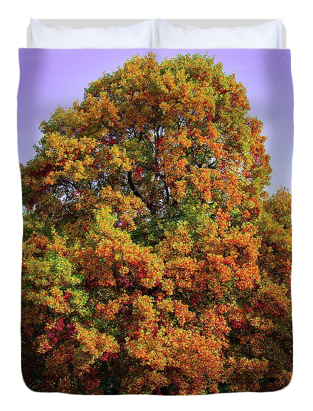 Nature In The Autumn  - Duvet Cover