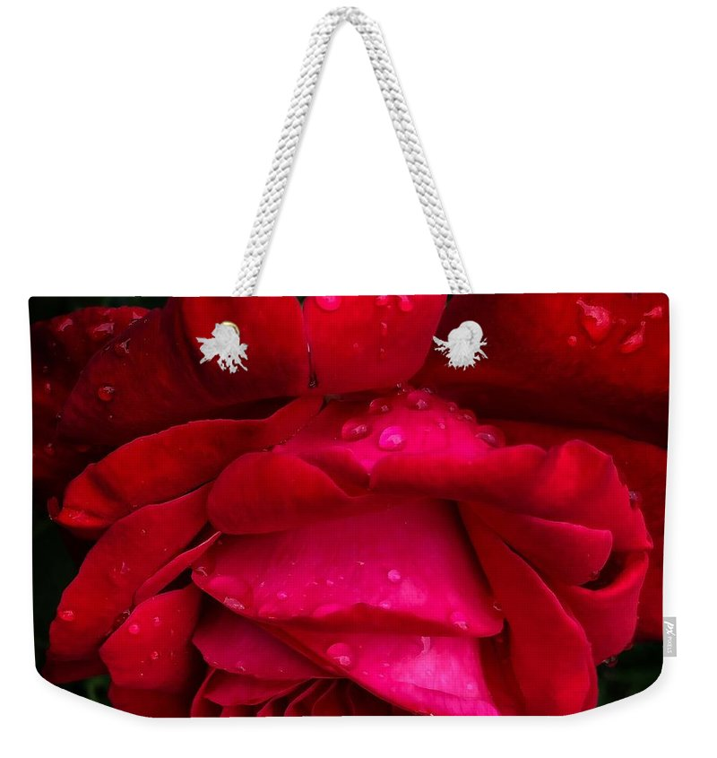 Red Rose Petals - Weekender Tote Bag