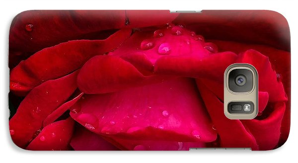 Red Rose Petals - Phone Case