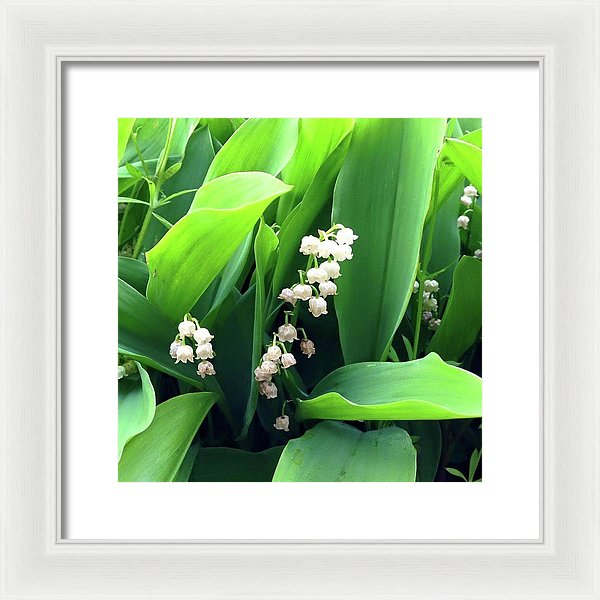 Return Of The Happiness - Framed Print