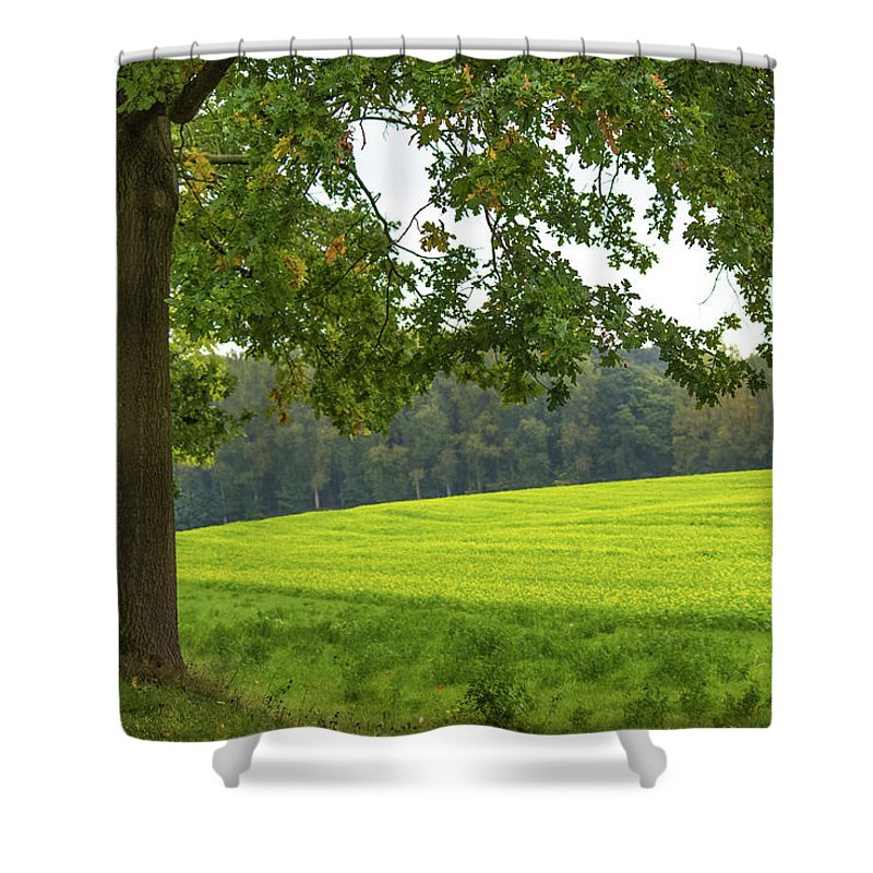 Splendid View In Autumn - Shower Curtain