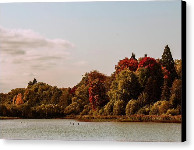 Stunning Surroundings In La Hulpe, Belgium - Canvas Print
