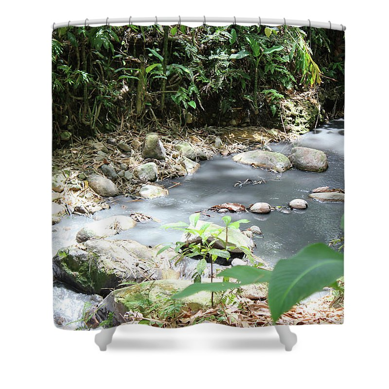 Sulphur Spring - Shower Curtain
