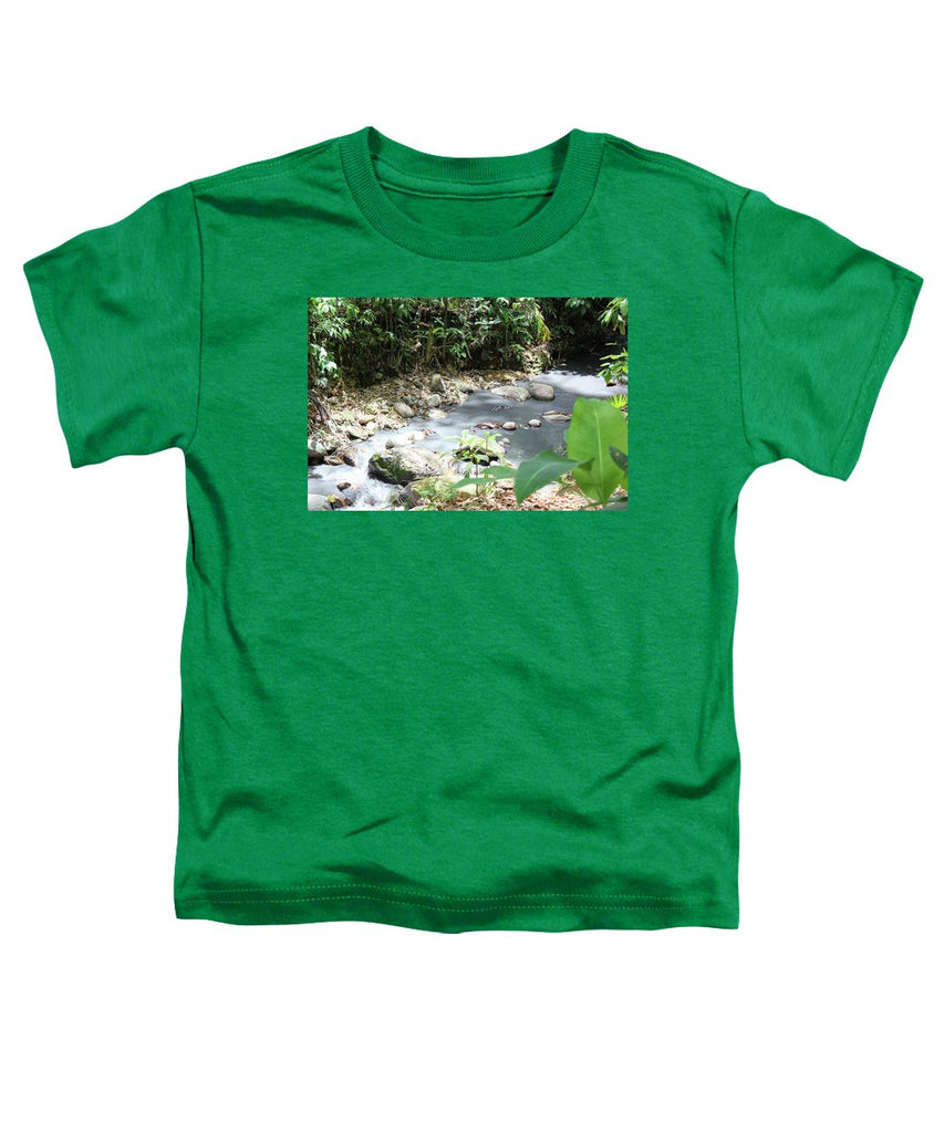 Sulphur Spring - Toddler T-Shirt