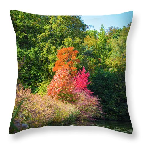 Surreal - Throw Pillow