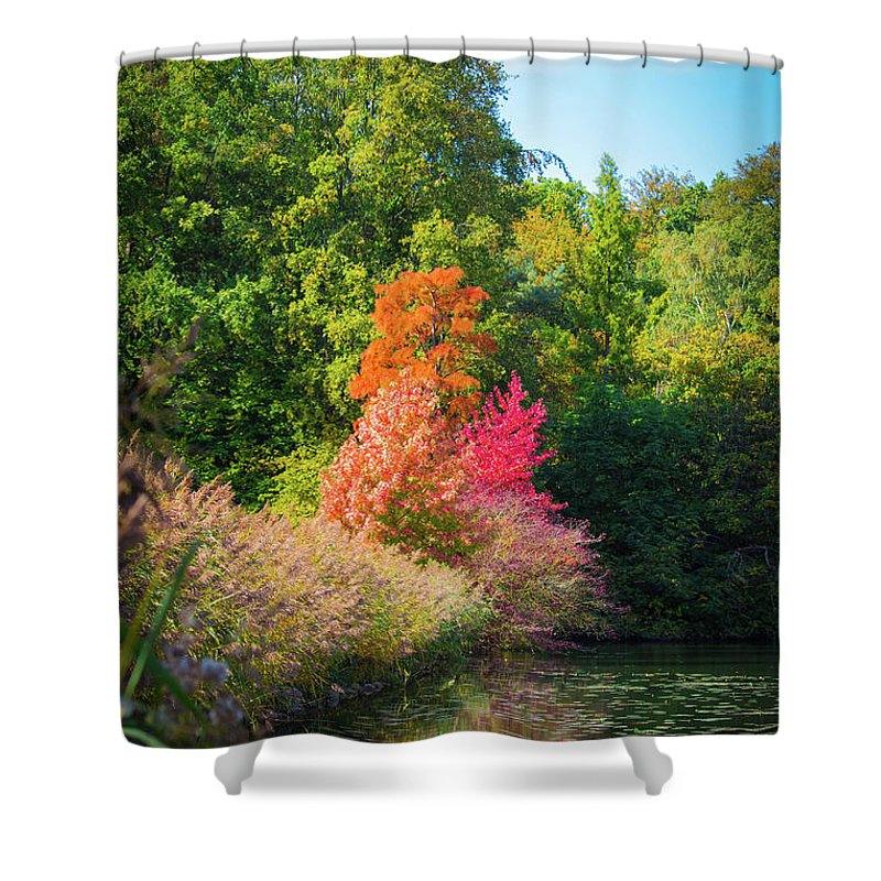Surreal - Shower Curtain