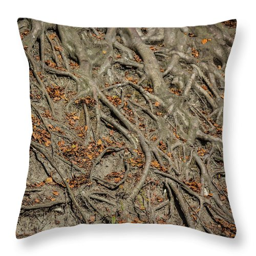 Trees' Roots - Throw Pillow