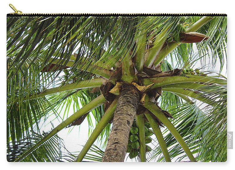 Under The Coconut Tree - Carry-All Pouch