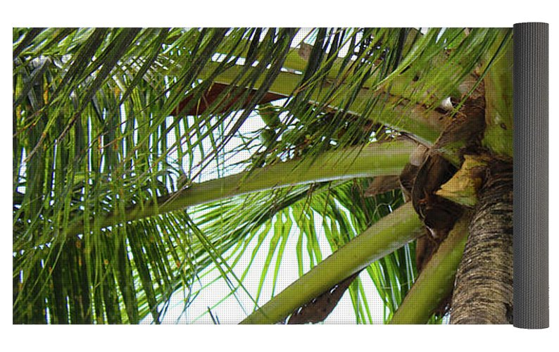 Under The Coconut Tree - Yoga Mat