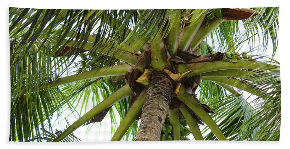 Under The Coconut Tree - Beach Towel