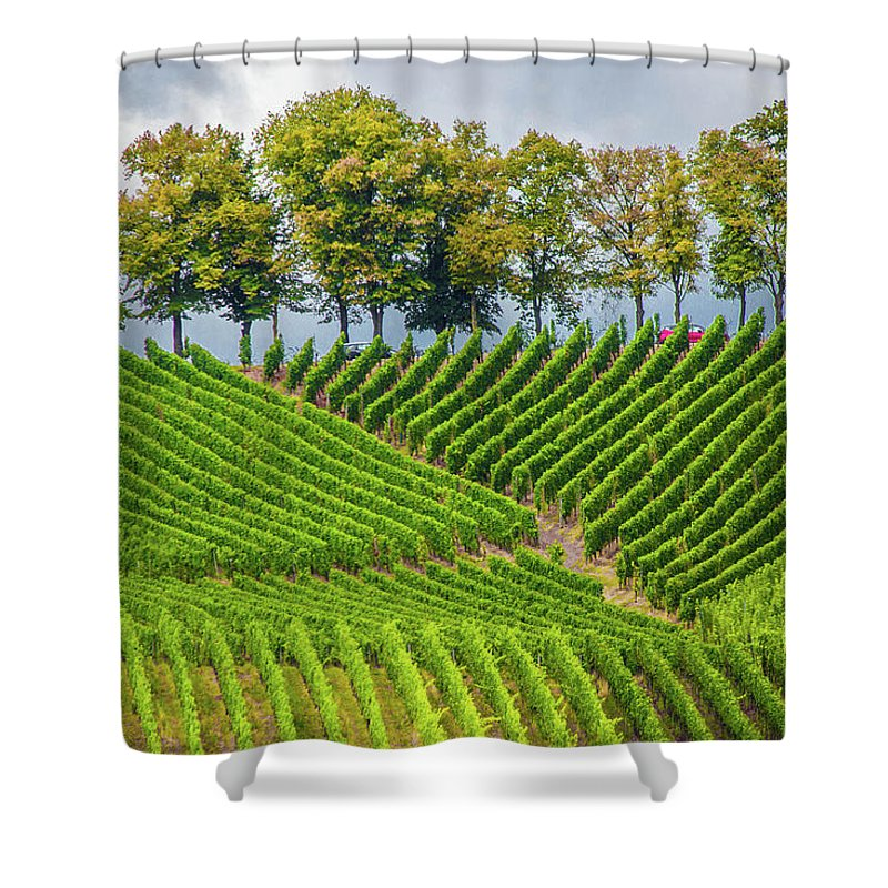 Vineyards In The Grand Duchy Of Luxembourg - Shower Curtain