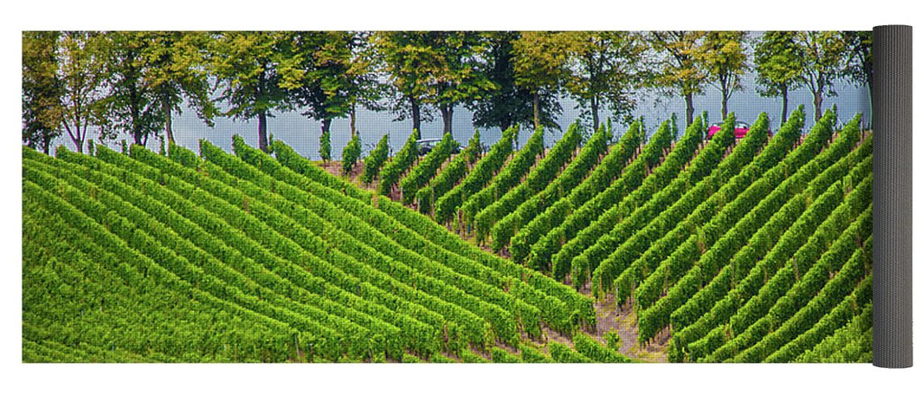Vineyards In The Grand Duchy Of Luxembourg - Yoga Mat