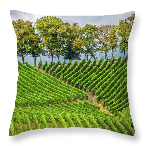 Vineyards In The Grand Duchy Of Luxembourg - Throw Pillow