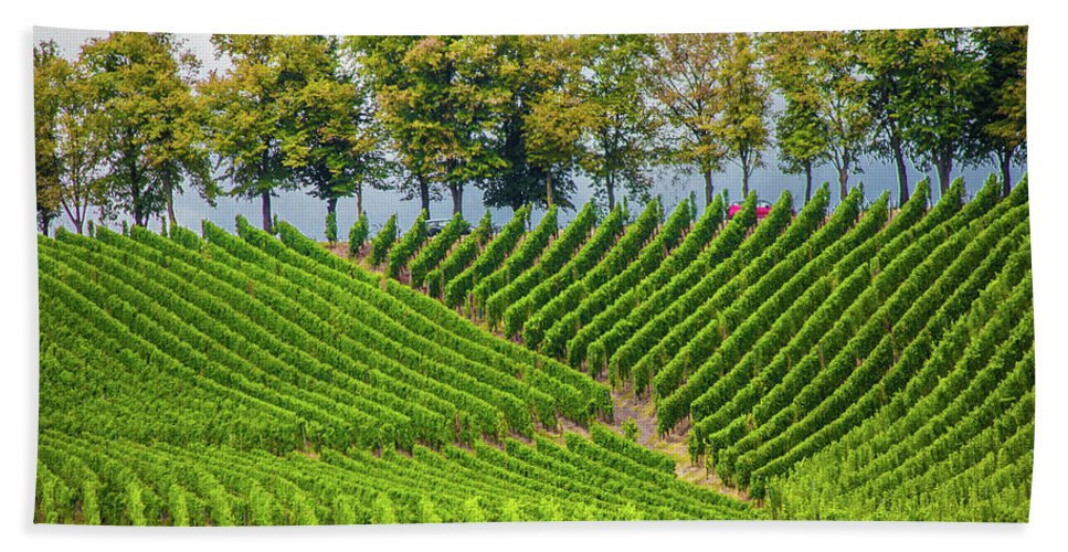 Vineyards In The Grand Duchy Of Luxembourg - Beach Towel