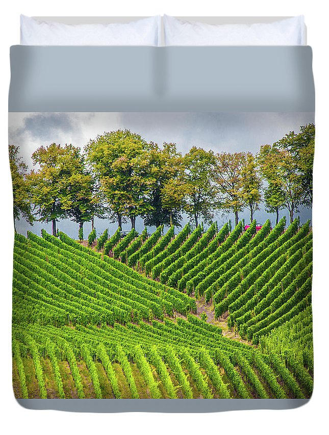 Vineyards In The Grand Duchy Of Luxembourg - Duvet Cover