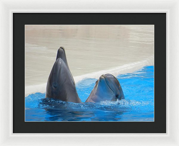 When Dolphins Dance - Framed Print