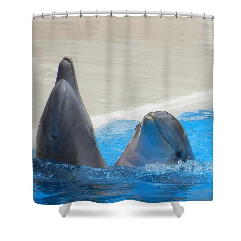 When Dolphins Dance - Shower Curtain