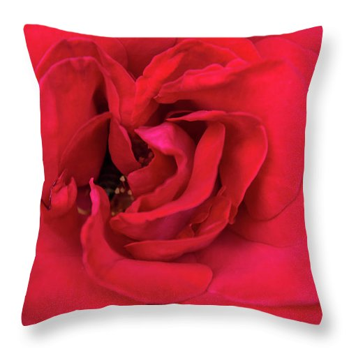 Whisper Of Passion - Throw Pillow