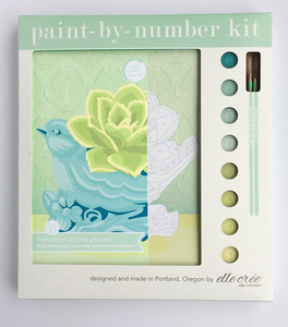 DIY - Paint By Number Kit - Succulent in Bird Planter