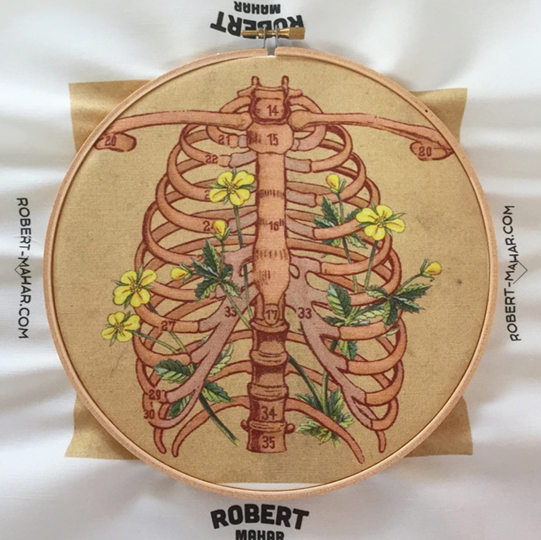 Embroidery Sampler - Rib Cage