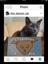 Load image into Gallery viewer, Sticker: Don't Sass the Cat