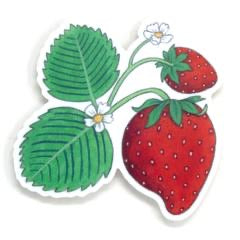 Sticker - Wild Strawberry
