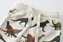 Load image into Gallery viewer, ROAR Dino Pants