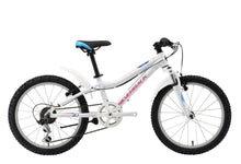 Load image into Gallery viewer, SILVERBACK Senza 20 Junior Bicycle