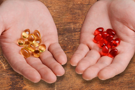 Fish Oil vs. Krill Oil: Which is The Right Omega-3 Oil for You?