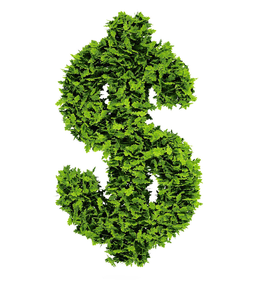 Dollar symbol made from vines and leaves