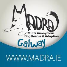 Adopt Don't Shop - May 2020, Featuring MADRA Dog Rescue