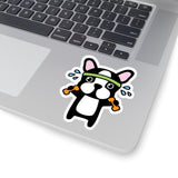 Laptop Stickers - Pit Bull Workout | Custom Stickers