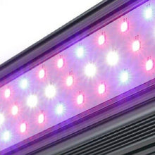 LED Grow Light - Kind LED X-Series XD75 LED Grow Bar