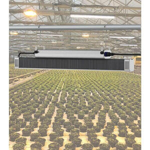 LED Grow Light - TotalGrow Top-Light High Output 330W LED Grow Light