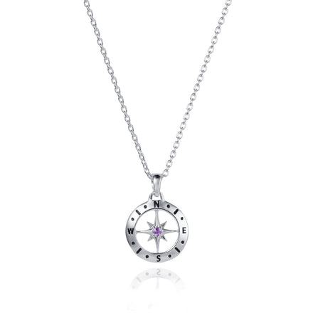 Photo of Image of Silver Compass Necklace With February Amethyst Birthstone