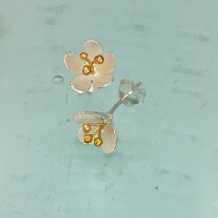 Silver & Gold Daisy Stud Earrings